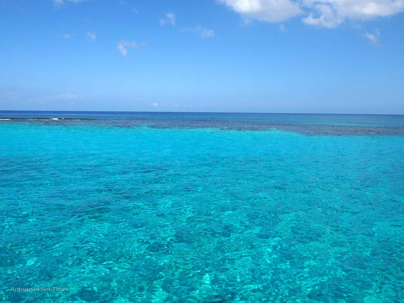 Looking directly at the Reef in Grand Cayman - North Sound
