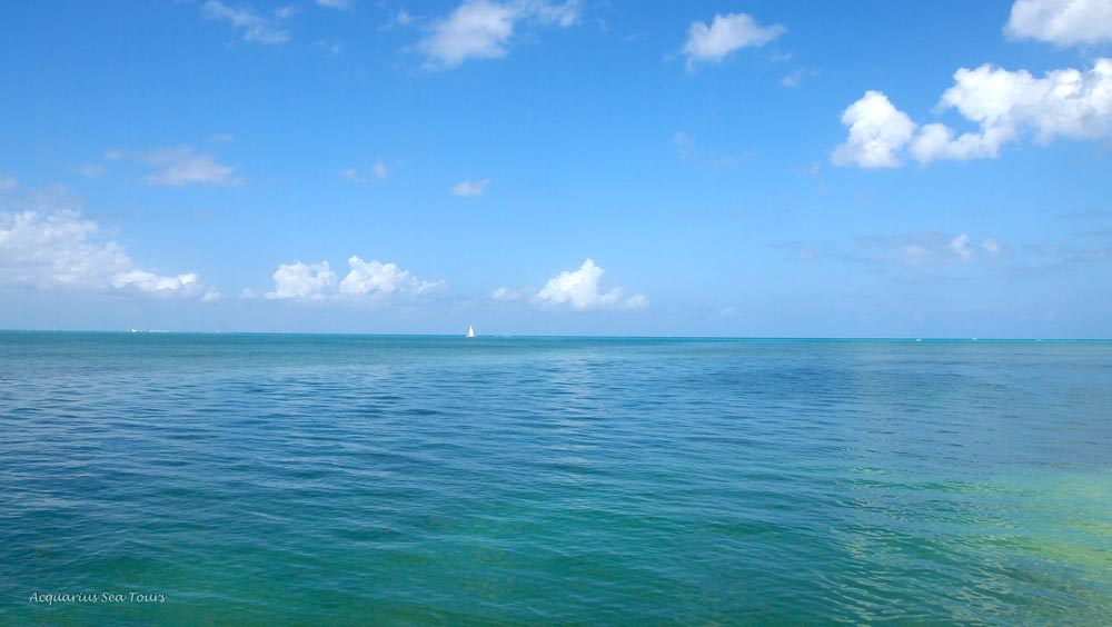 A favourite stop on our tours - view from Starfish Point in Grand Cayman