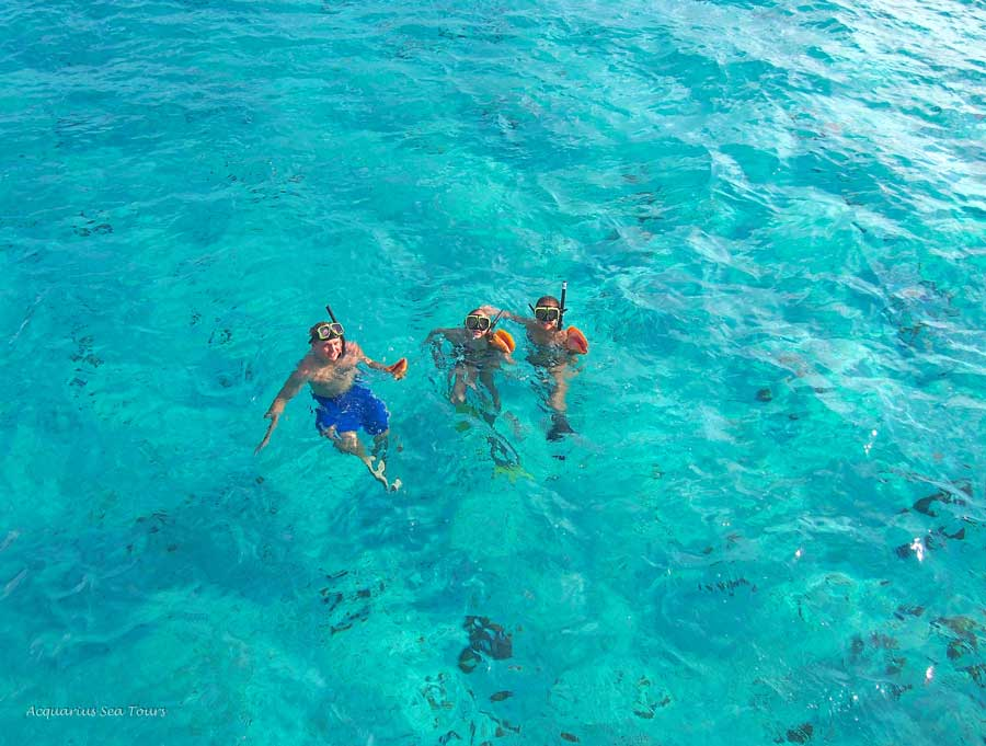 Snorkel guests and conch shells - Grand Cayman