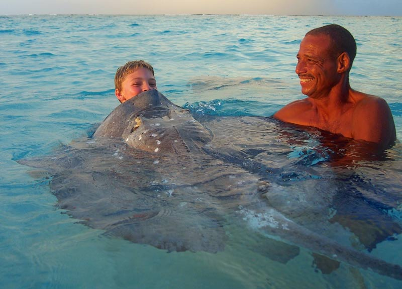 Kissing stingrays at sunset in Grand Cayman