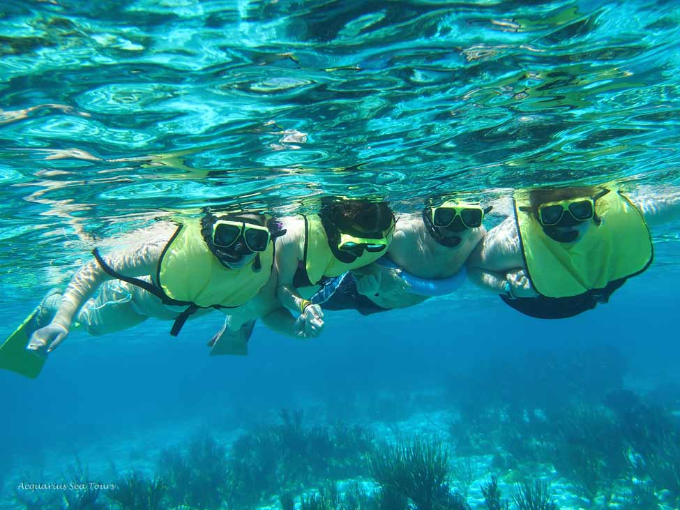 A great group photo of some visitors snorkelling  Coral Gardens