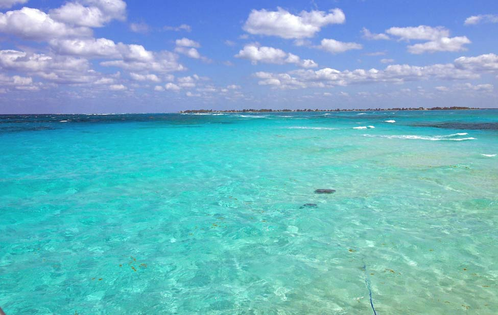 The sandbar in Grand Cayman