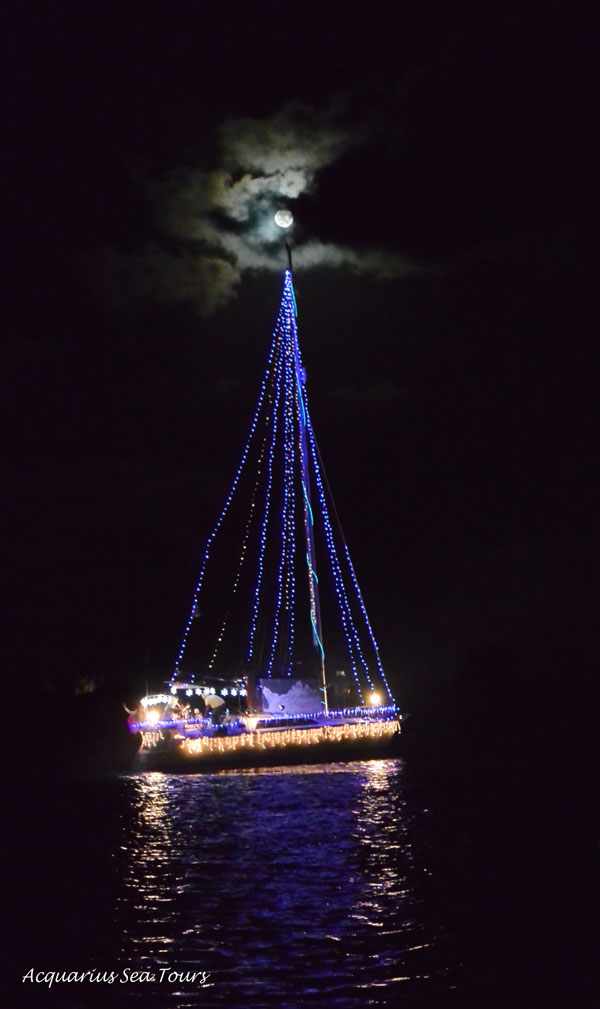 Parade of lights Camana Bay