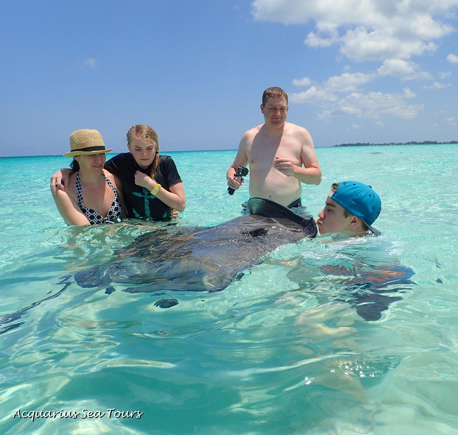 DIY stingray kiss at the Sandbar in Grand Cayman