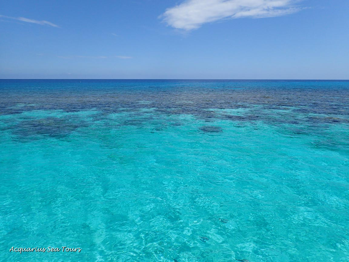 Blessed and beautiful calm at the Barrier Reef - Grand Cayman