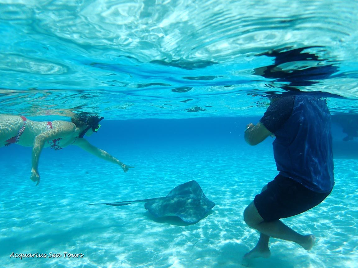 Incredible clarity of water at Stingray City