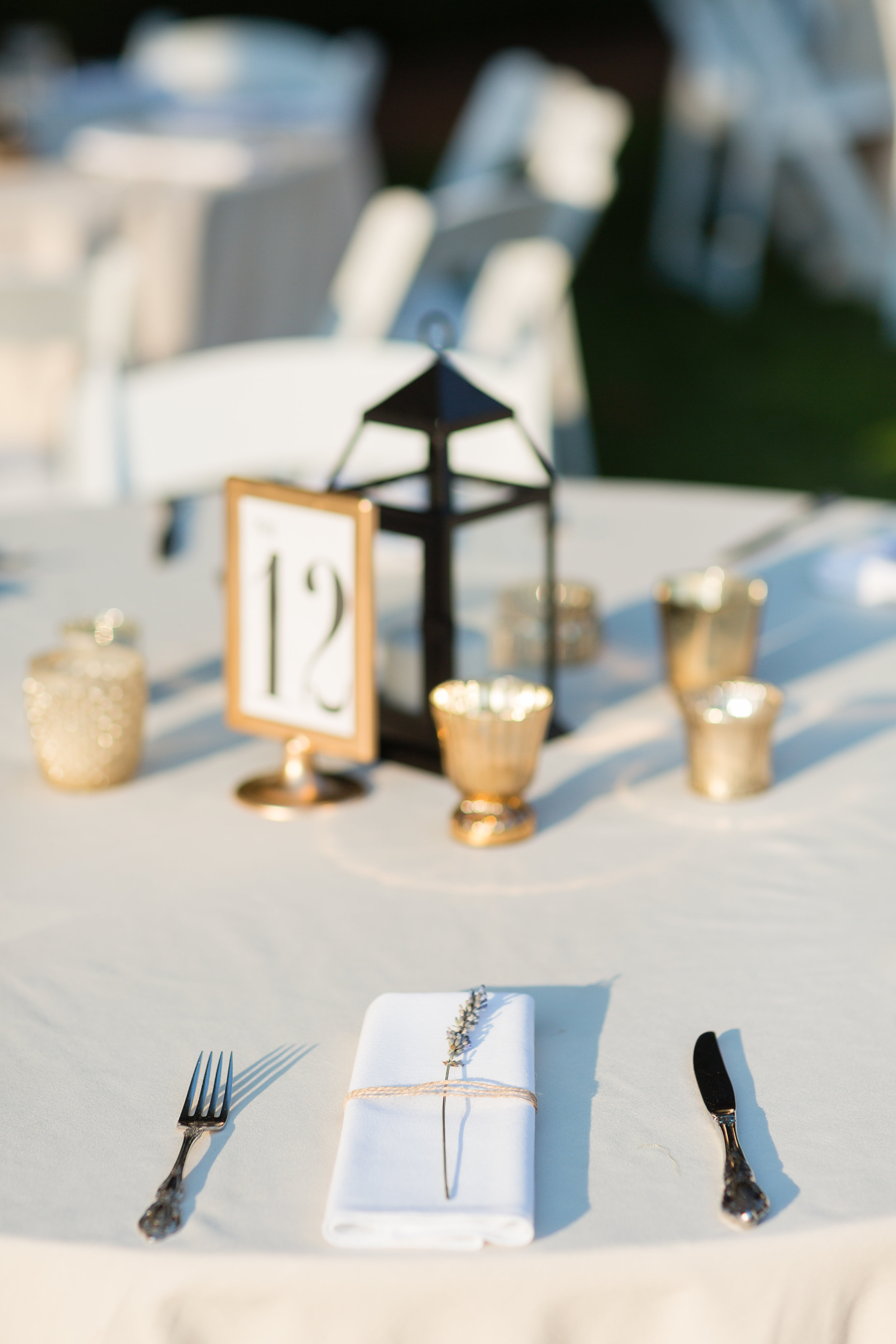 Annalise-Nick-Maple-Lawn-Wedding-449.jpg