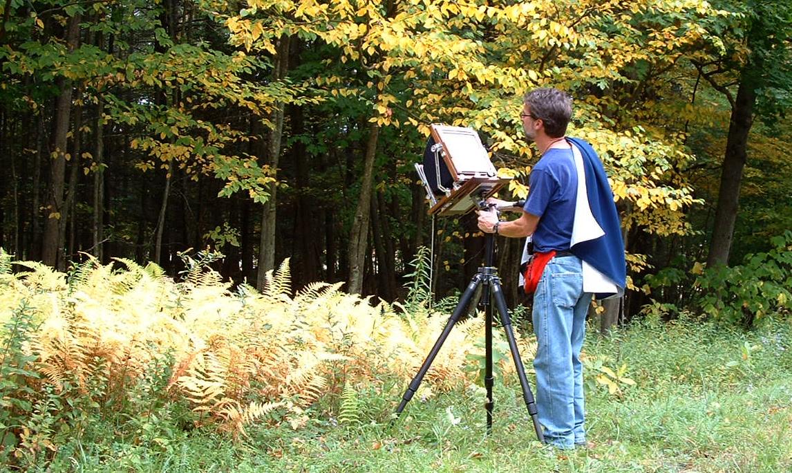 Thomas Teich Photographic Arts - J'aime Fougère (I Love Ferns)