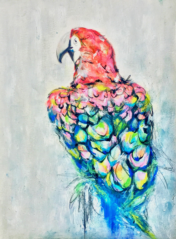parrotifullcolor.png