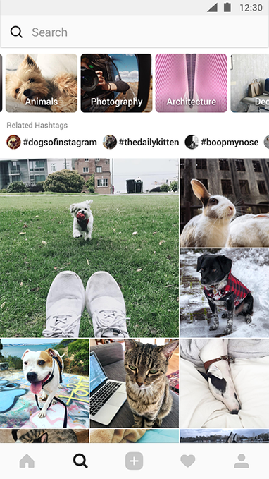 Example of a user's Explore page.