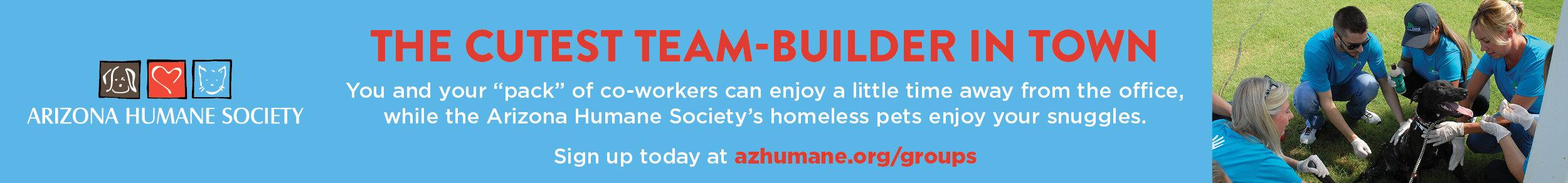 Group Volunteering Banner Ad.jpg