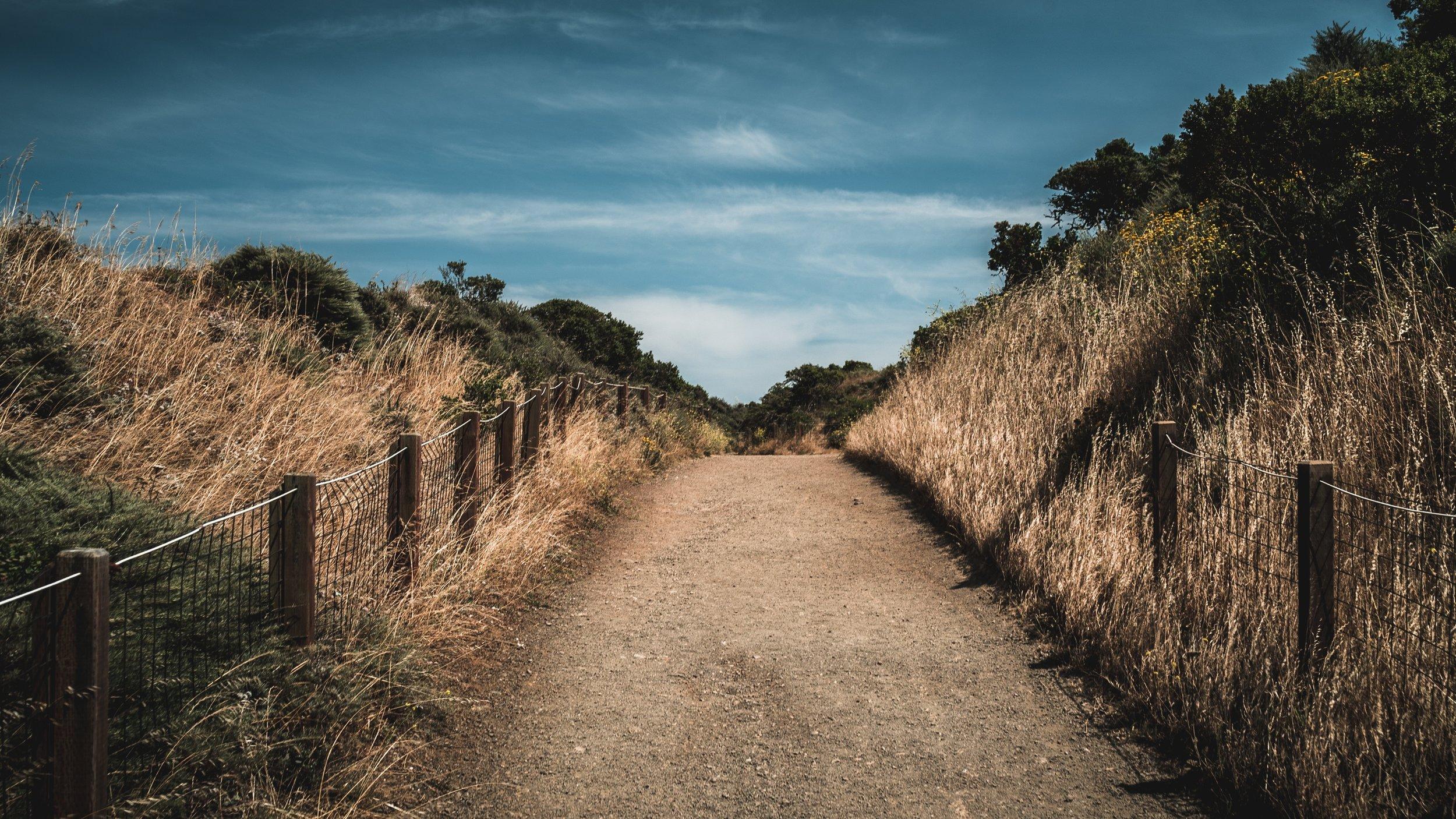 dirt-road.jpg