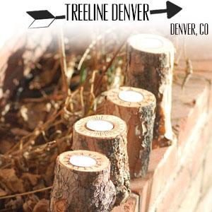 www.treelinedenver.com