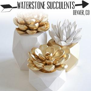 etsy.com/shop/waterstonesucculents