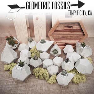 Geometric Fossils.jpg