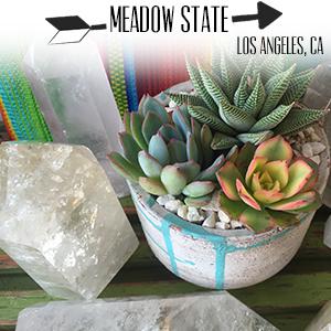 Meadow State.jpg