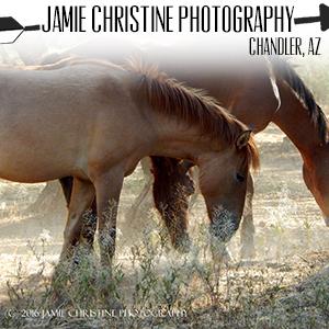 Jamie Christine Photography.jpg