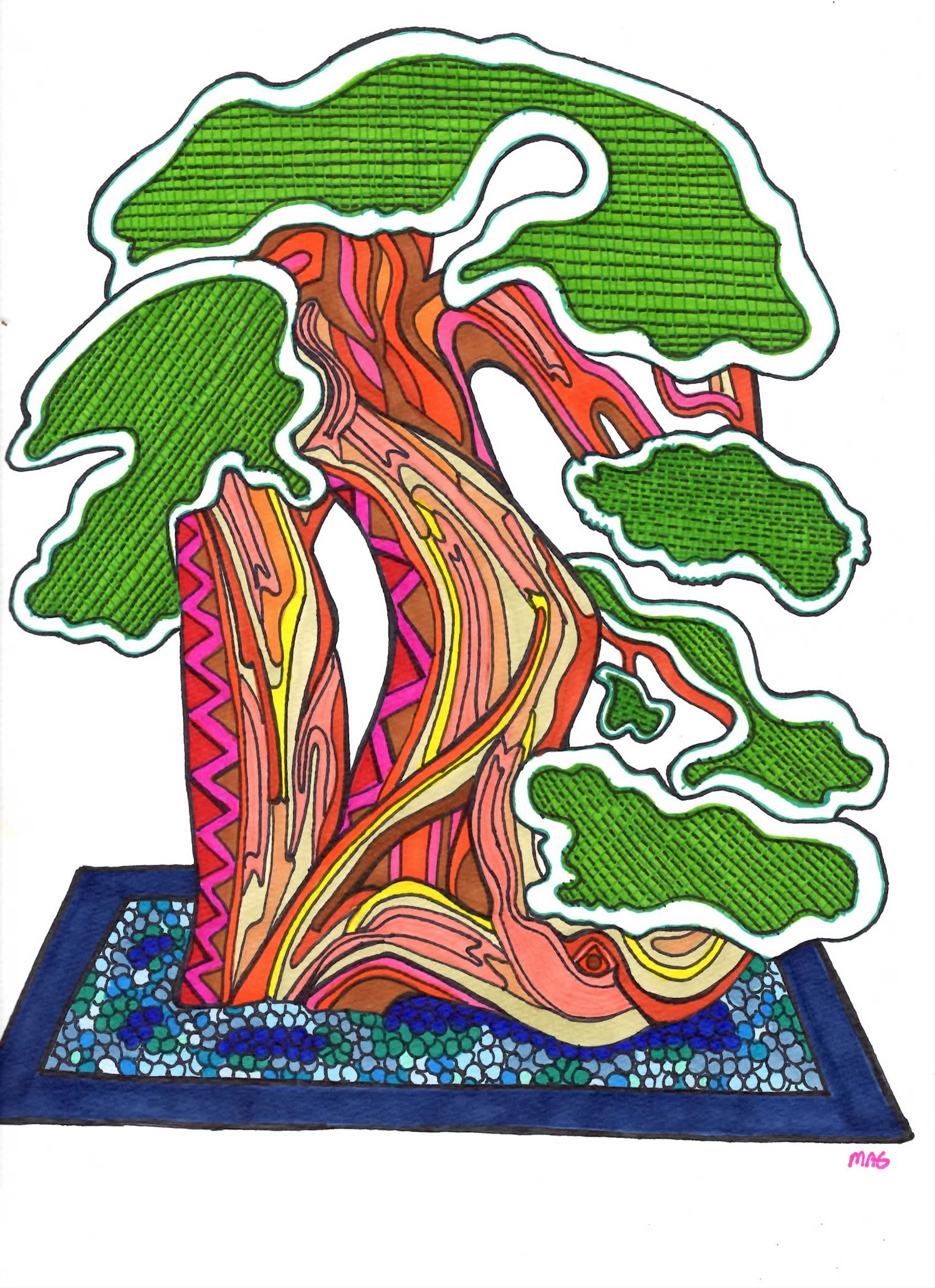 Bonsai 1 (sold)