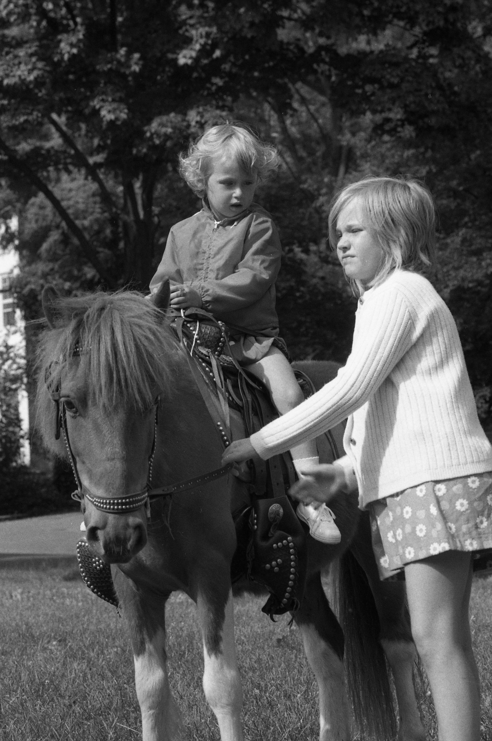 Picture 13: Pony Ride
