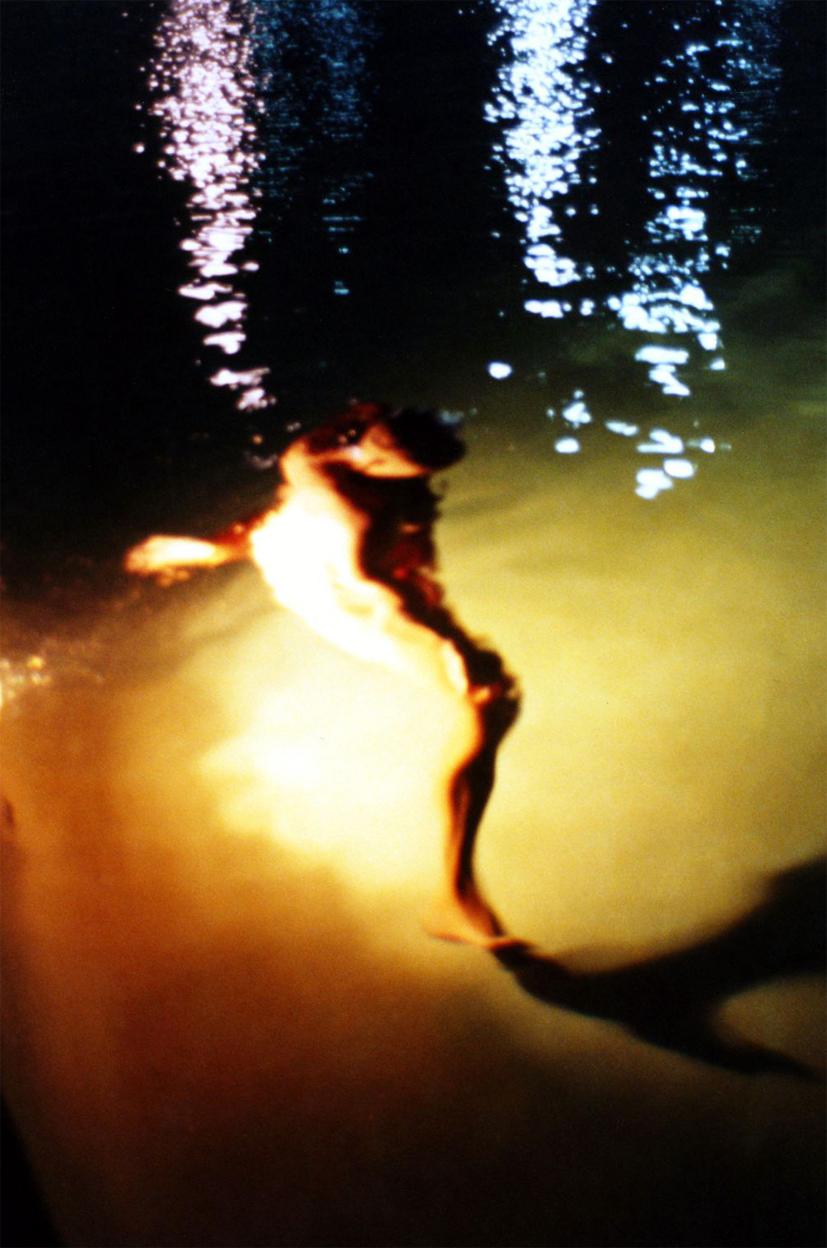 Metamorphosis. Miami. 1998
