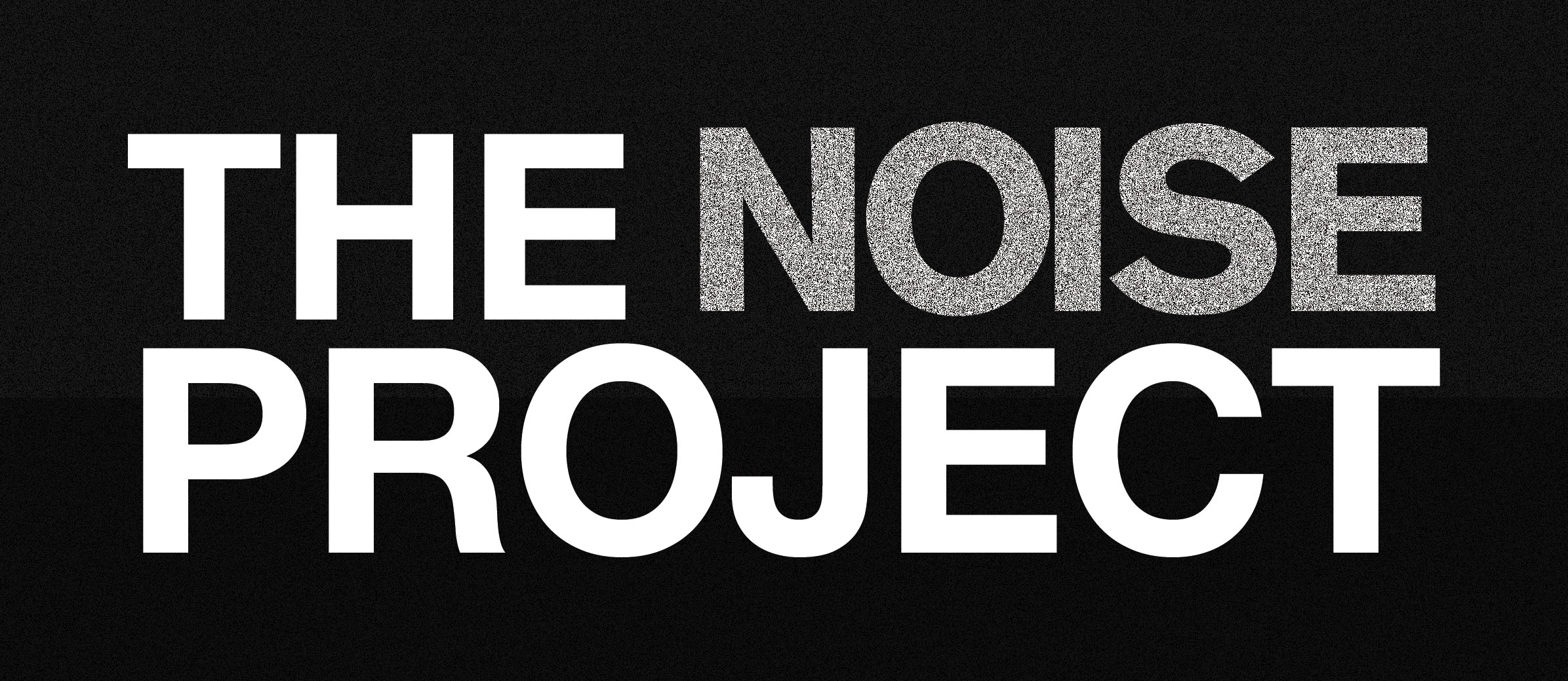 THE NOISE PROJECT
