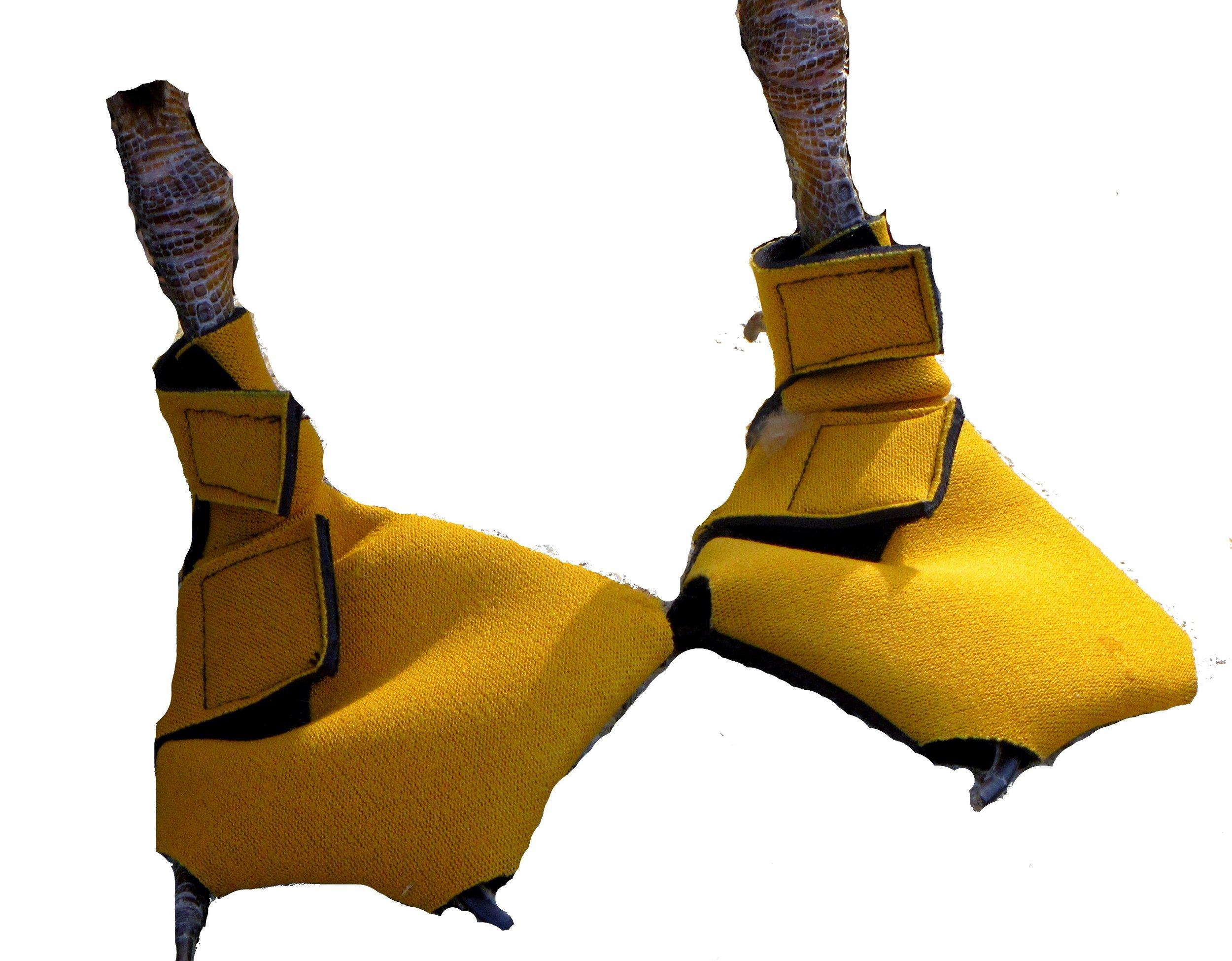 ming shoes 3.jpg