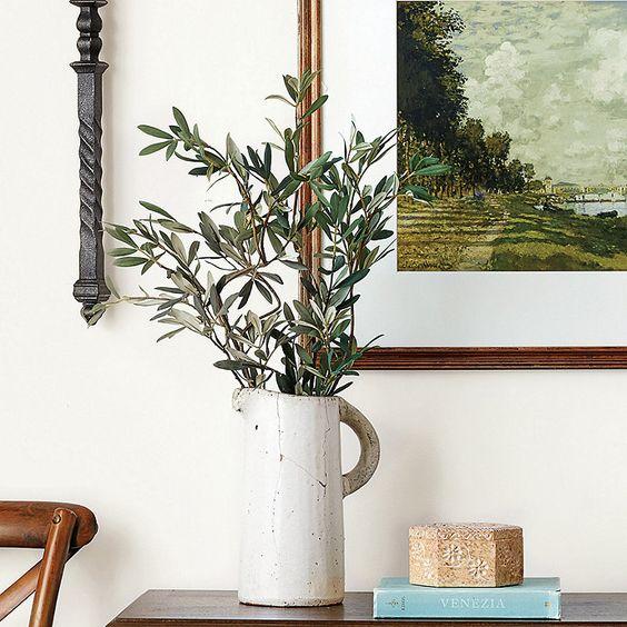 Olive Leaf Stems