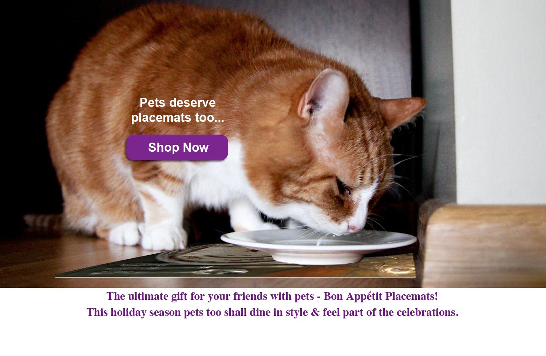 Bon Appetit Pet Placemats Cat.jpg