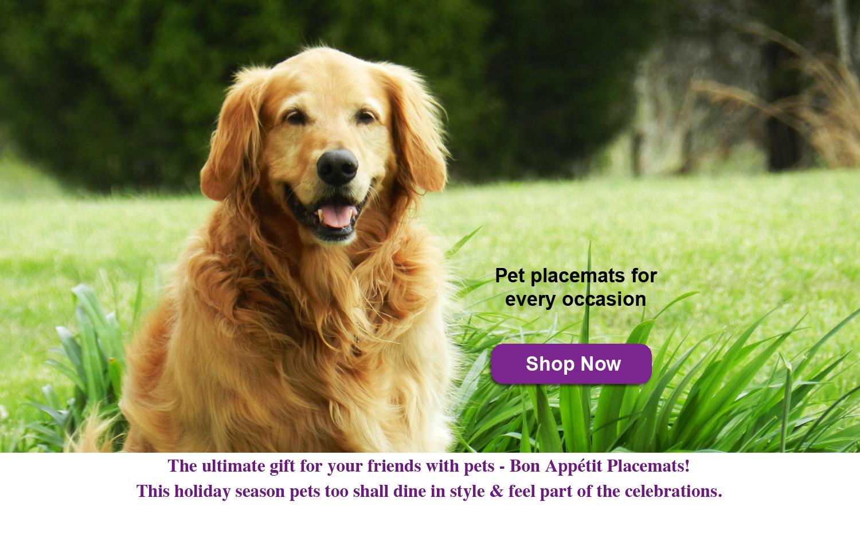 Bon Appetit Pet Placemats Retriever.jpg