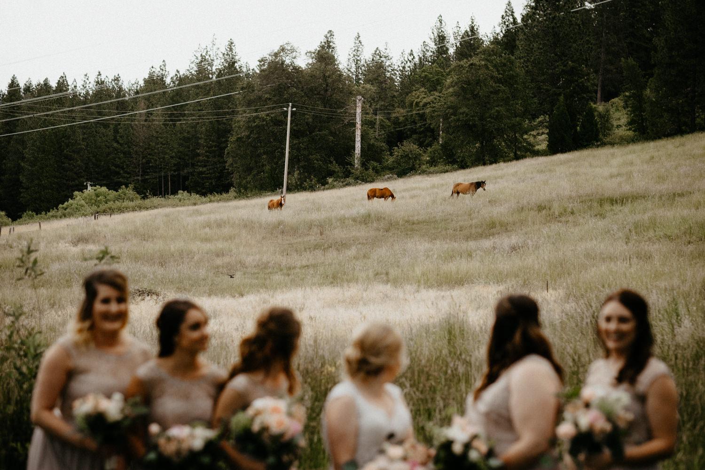 Luke and Brittany Backyard Wedding Redding Northern California-76.jpg