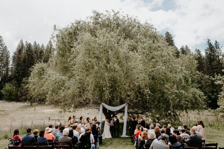 Luke and Brittany Backyard Wedding Redding Northern California-108.jpg