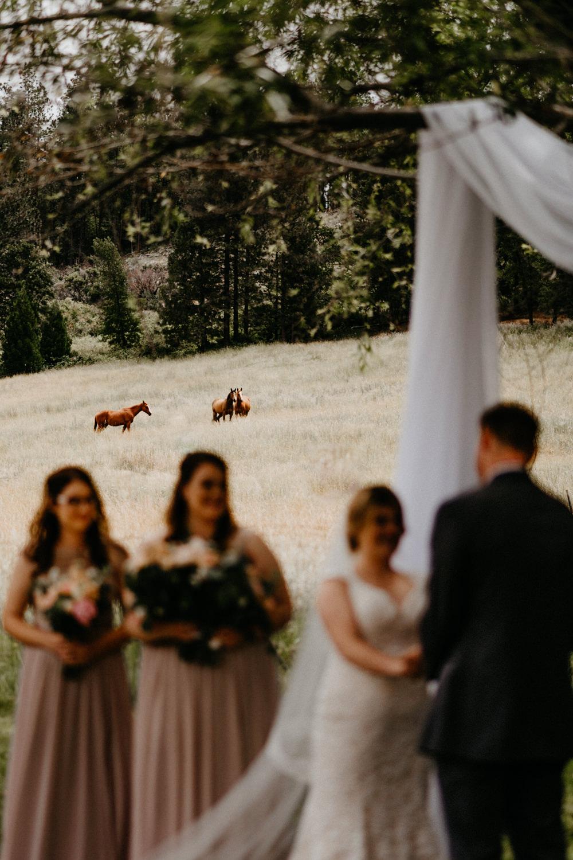 Luke and Brittany Backyard Wedding Redding Northern California-112.jpg