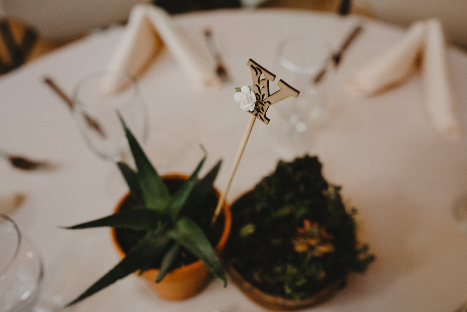 succelent table settings at wedding