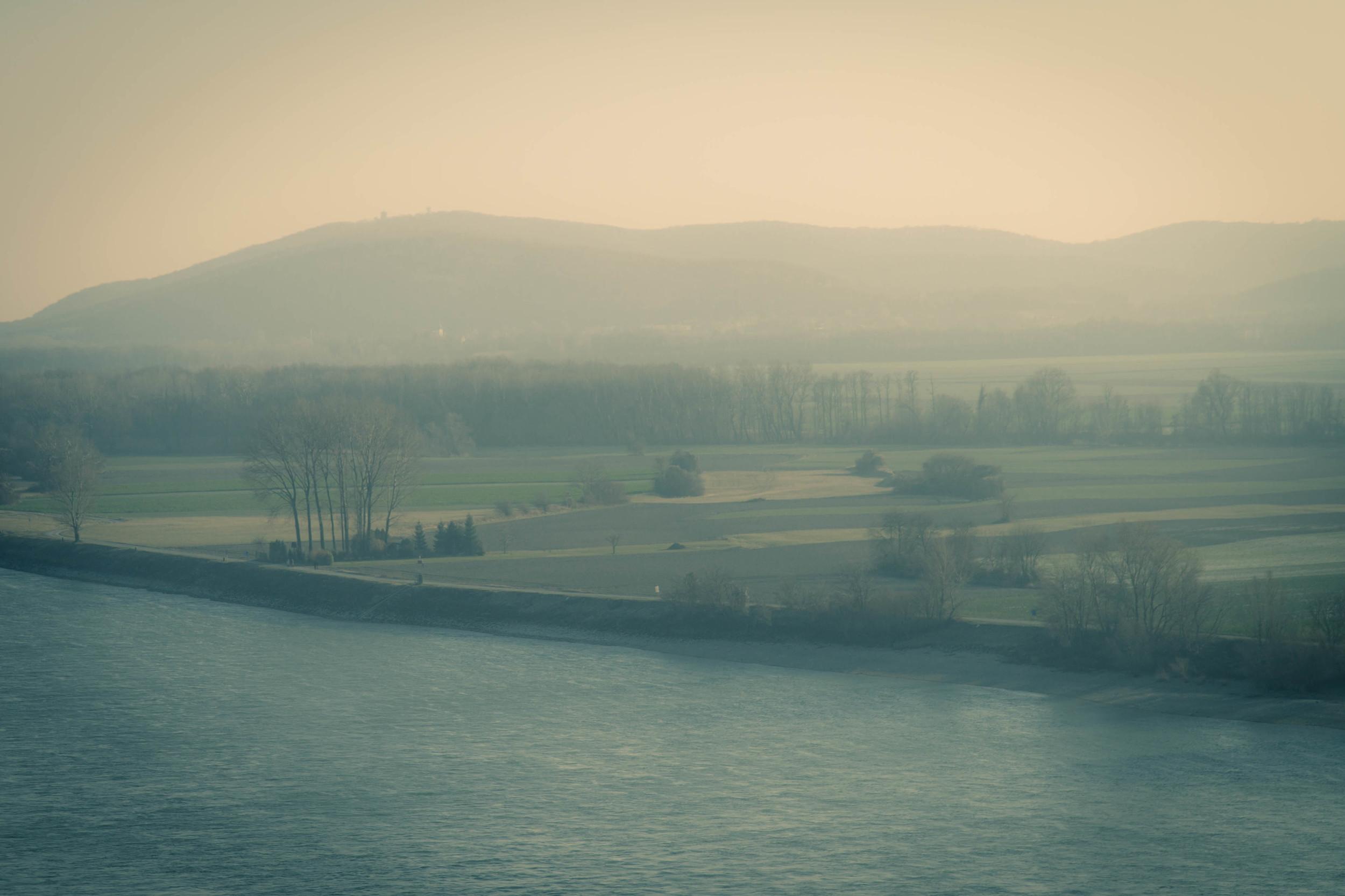 Austrian Mists