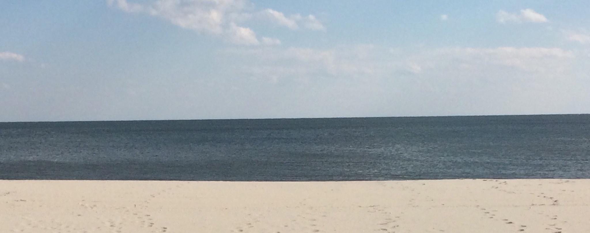 Beach photo cropped.jpg