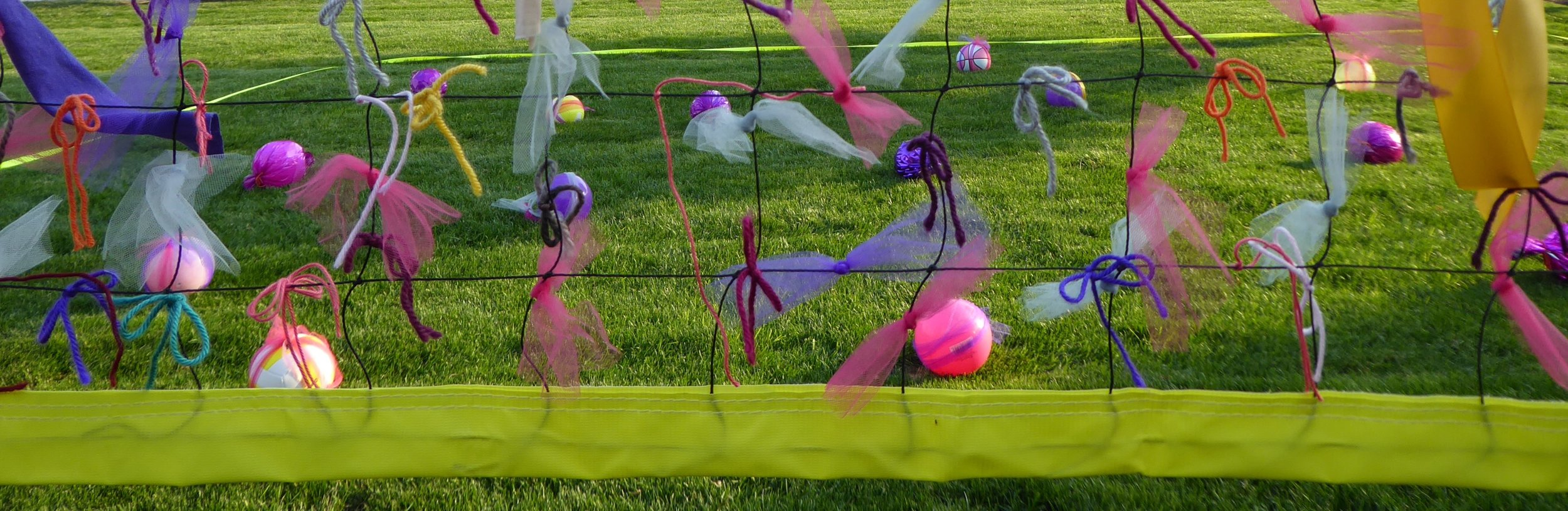 Detail of embellished volleyball net