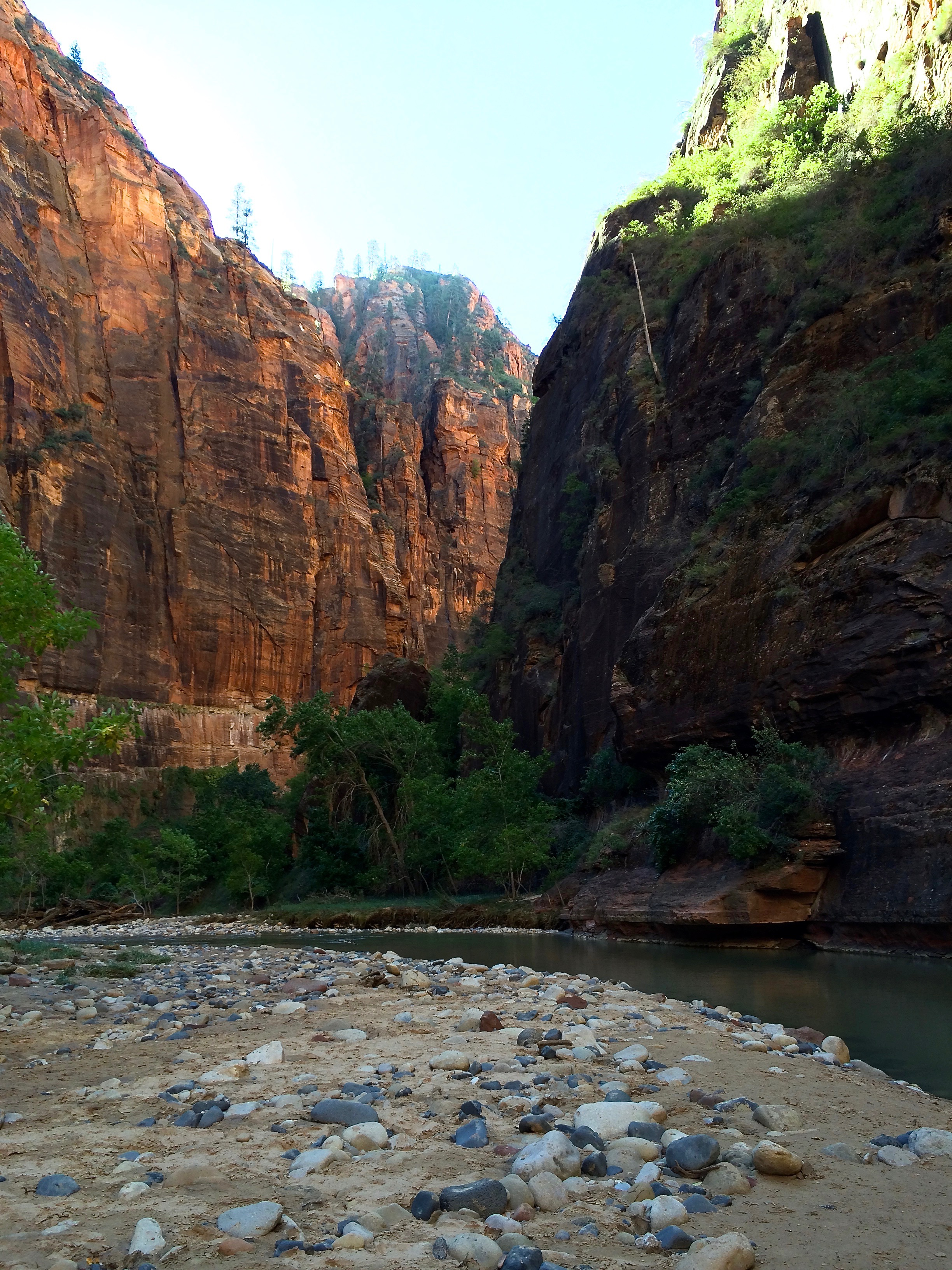 Sam in Zion - Hiking to Observation Point
