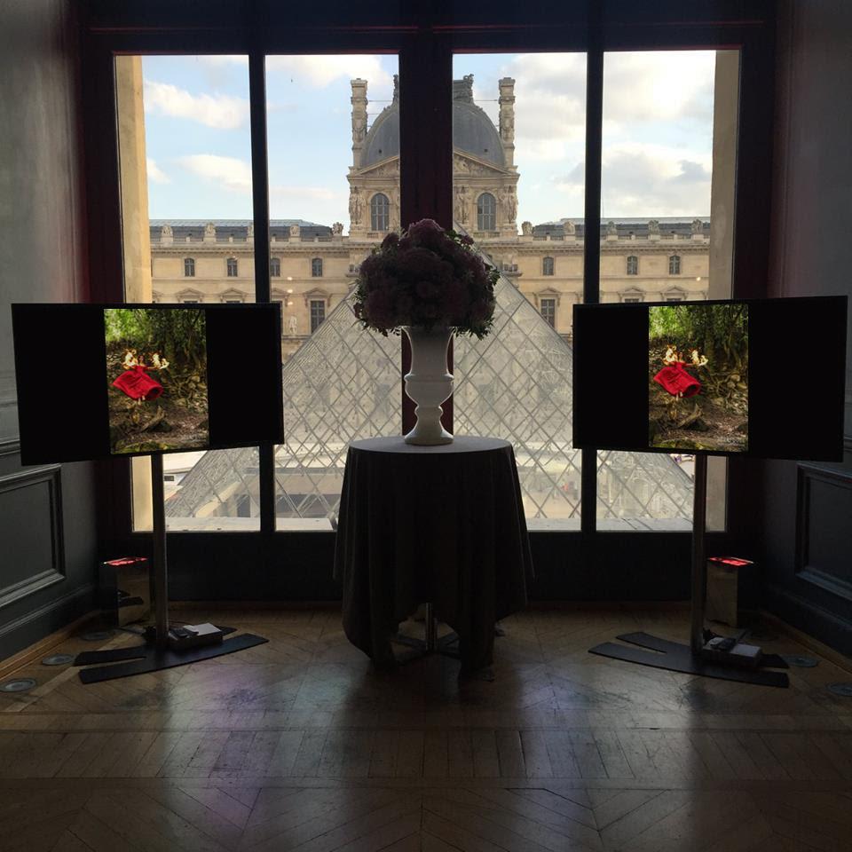 Dreamers Collection, Salamander: Musee du Louvre - Jul 2015
