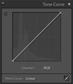 Tone-Curve-Panel.jpg