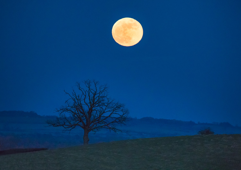 Super Blue Blood Moon, Oxford