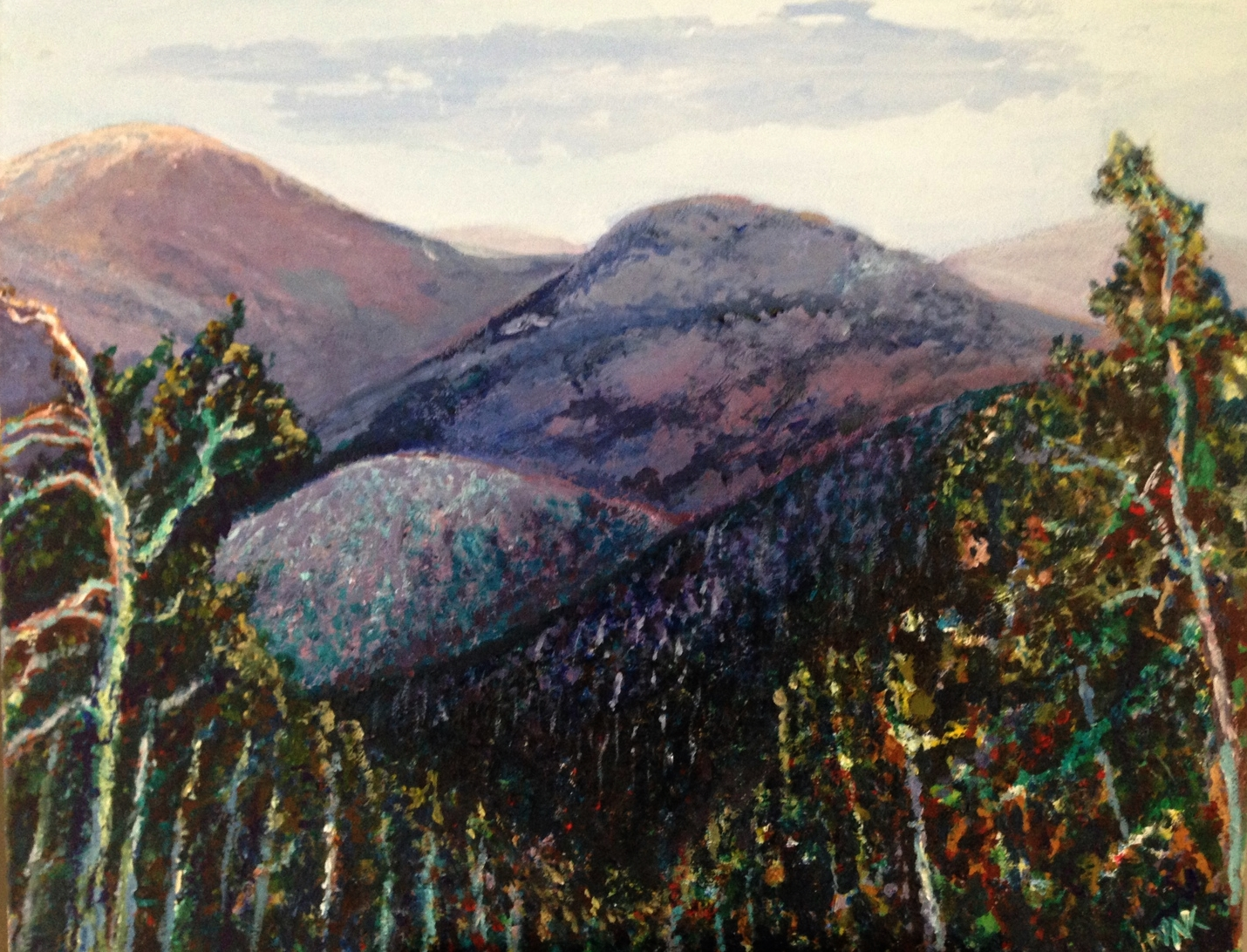 View from Mt. Swansea, Acrylic on Canvass, 16x20.  $325 SOLD