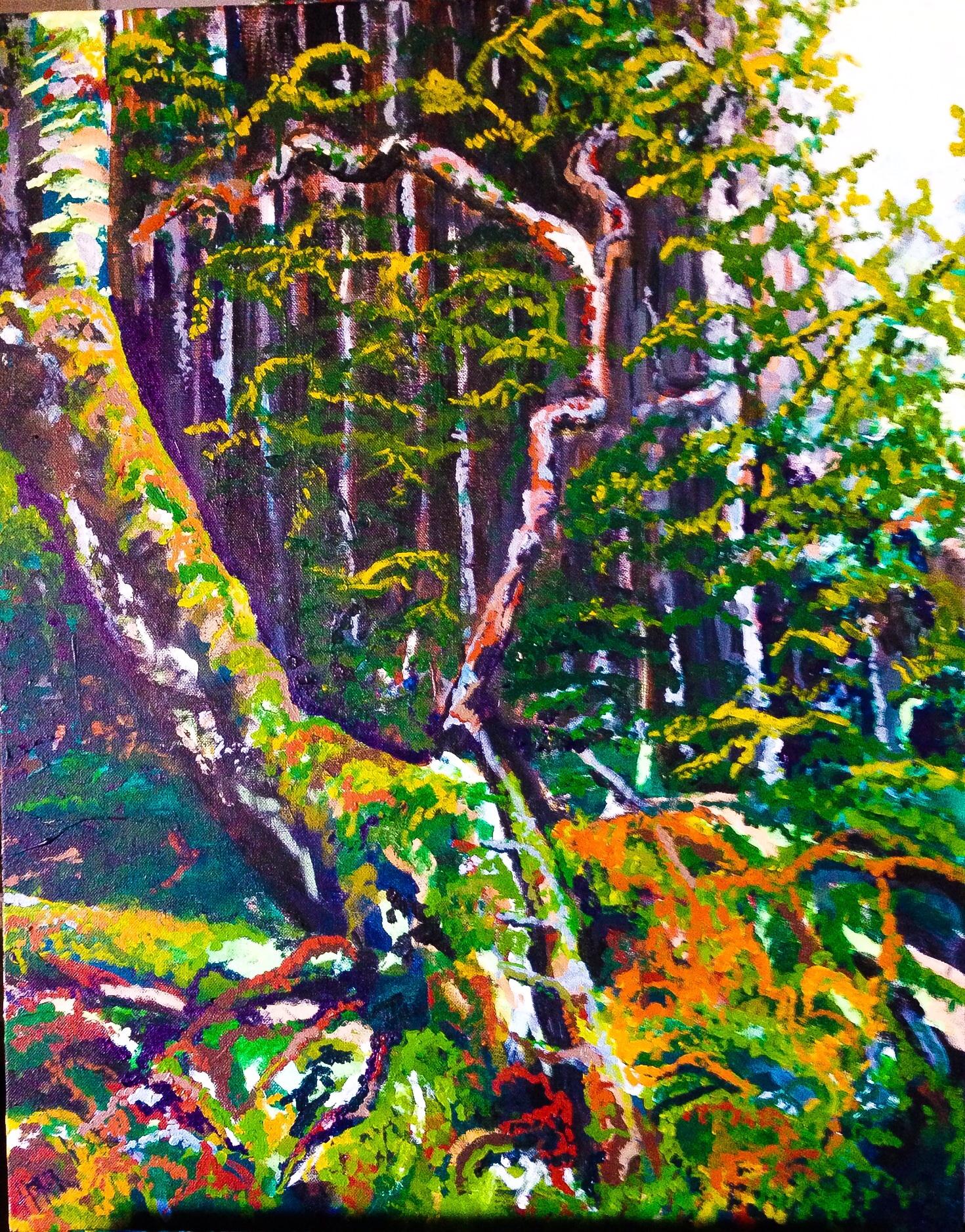 """Haida Gwaii, 3. Acrylic on a Canvass. 22""""x28"""". $650"""