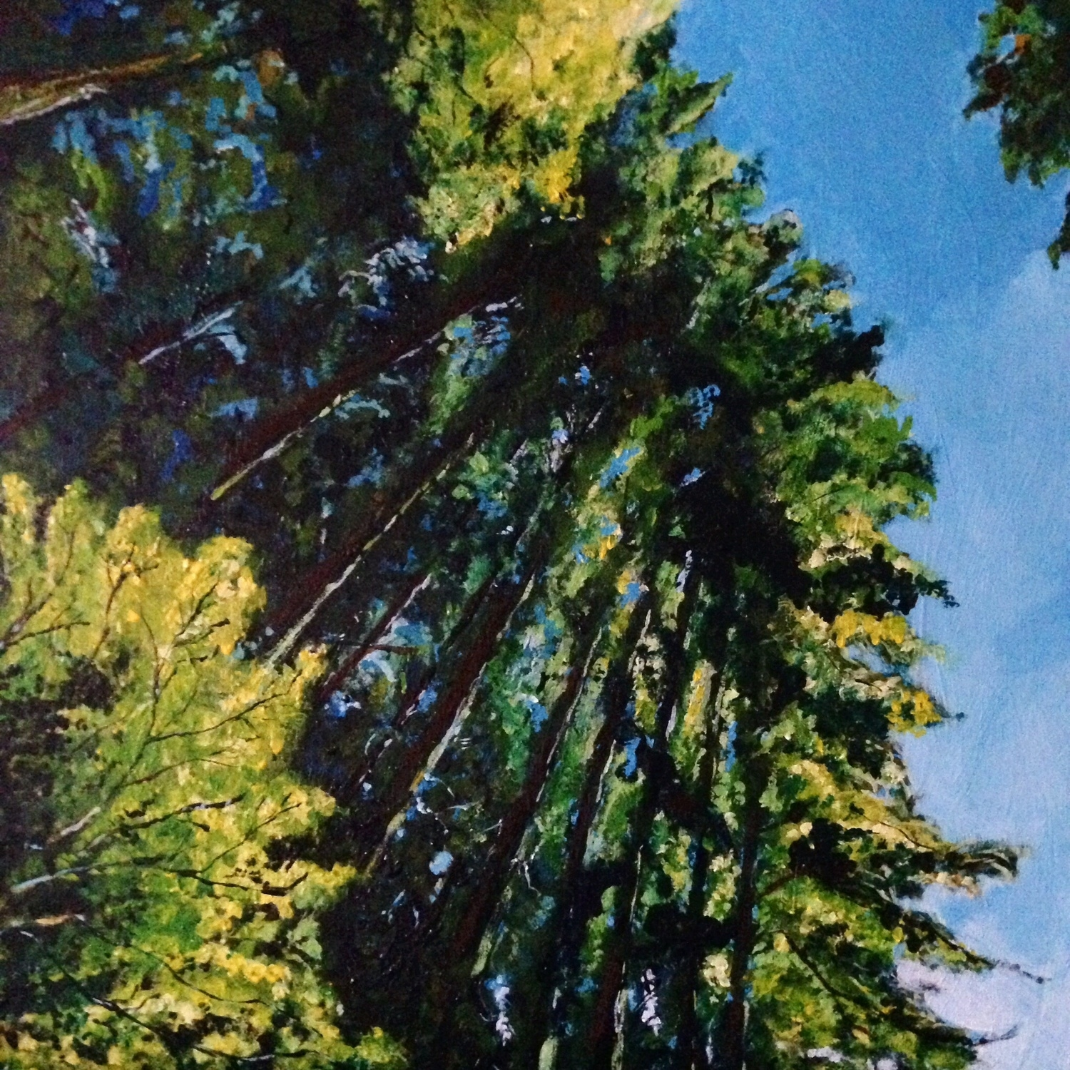 Lynn Valley, 3.  Acrylic on Wood Panel, 12x12.  $350 SOLD