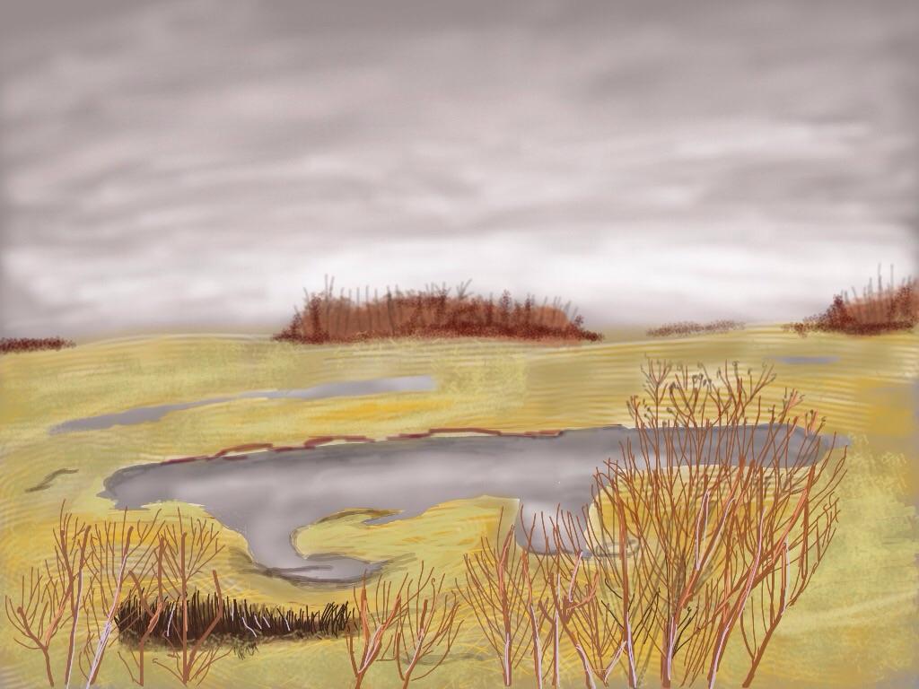 Train Sketch - Saskatchewan ViaVia