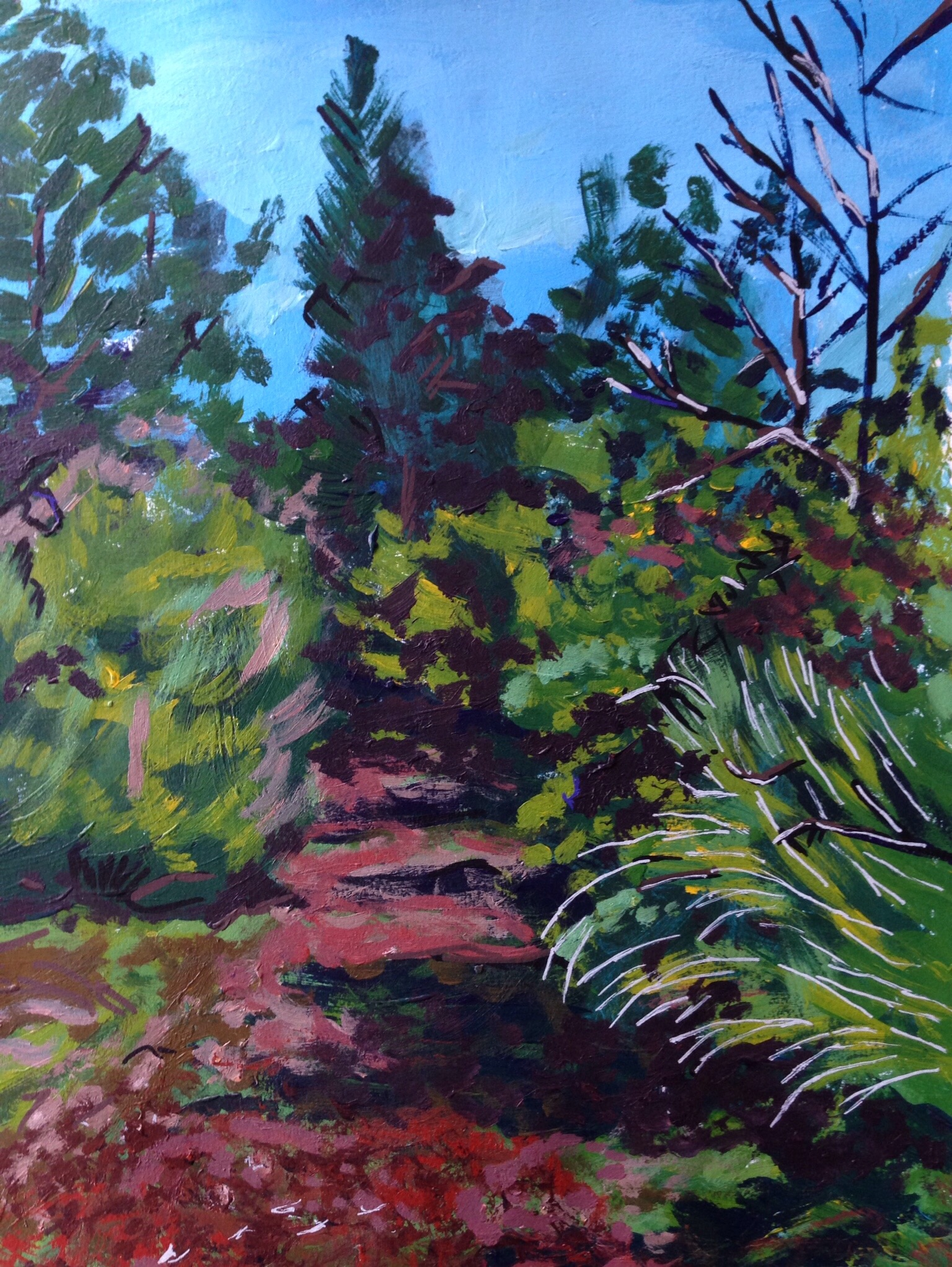 Into the Woods - P.E.I. Sketch - acrylic on Paper