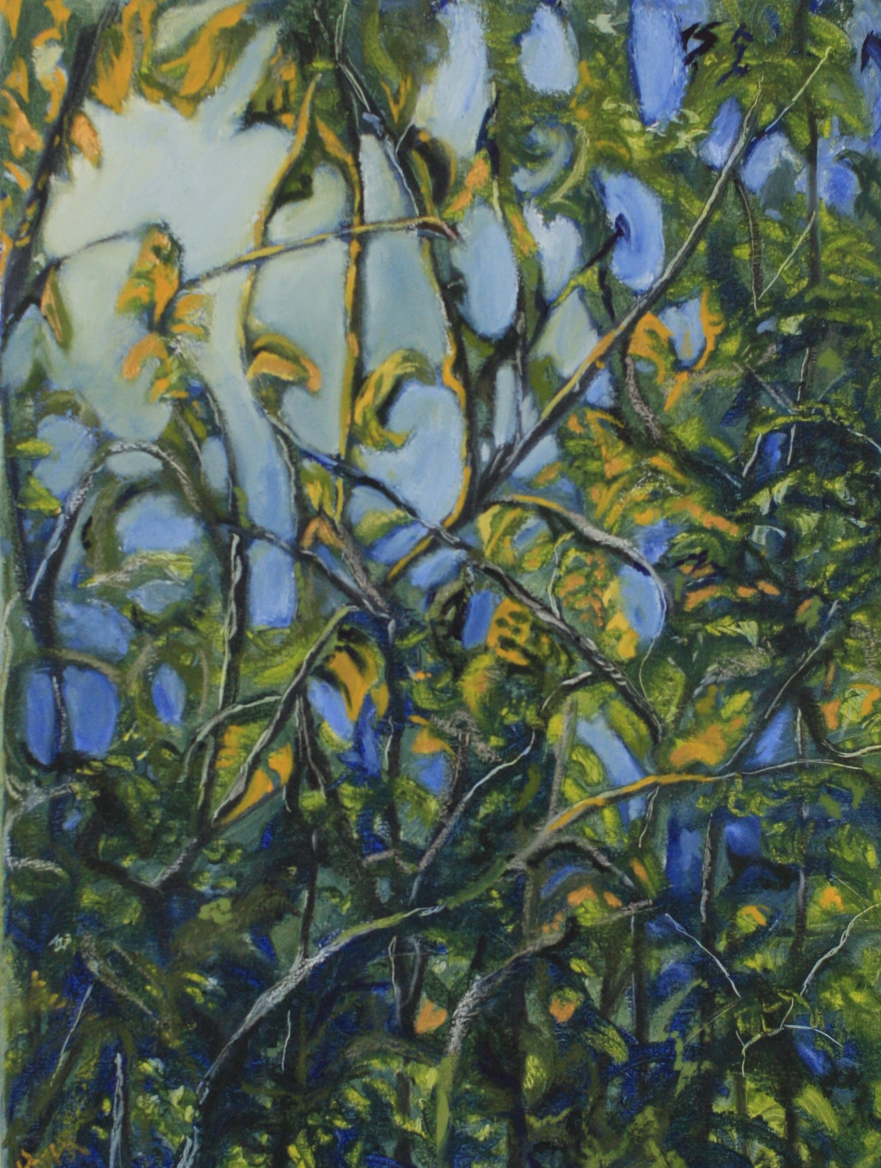 Lynn Valley, B.C. - Oil on Canvass.  2.5'x3.3' $1000