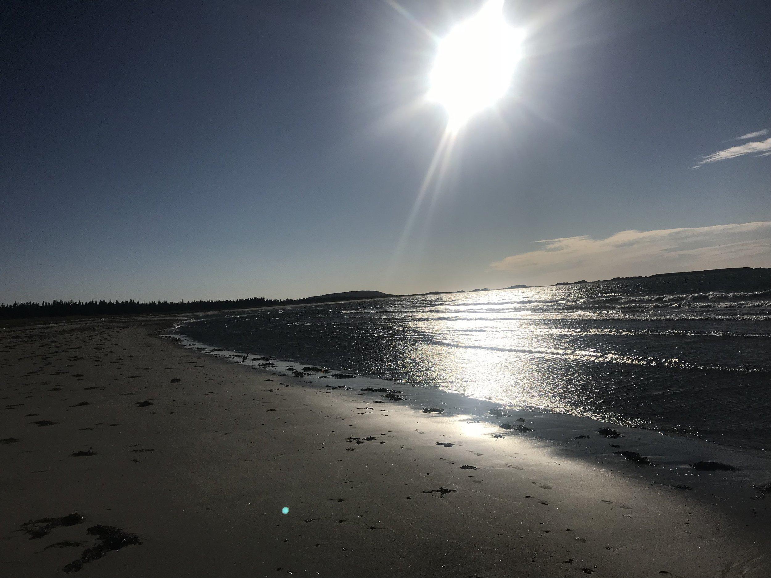 The Beach at Cowhead, NFLD