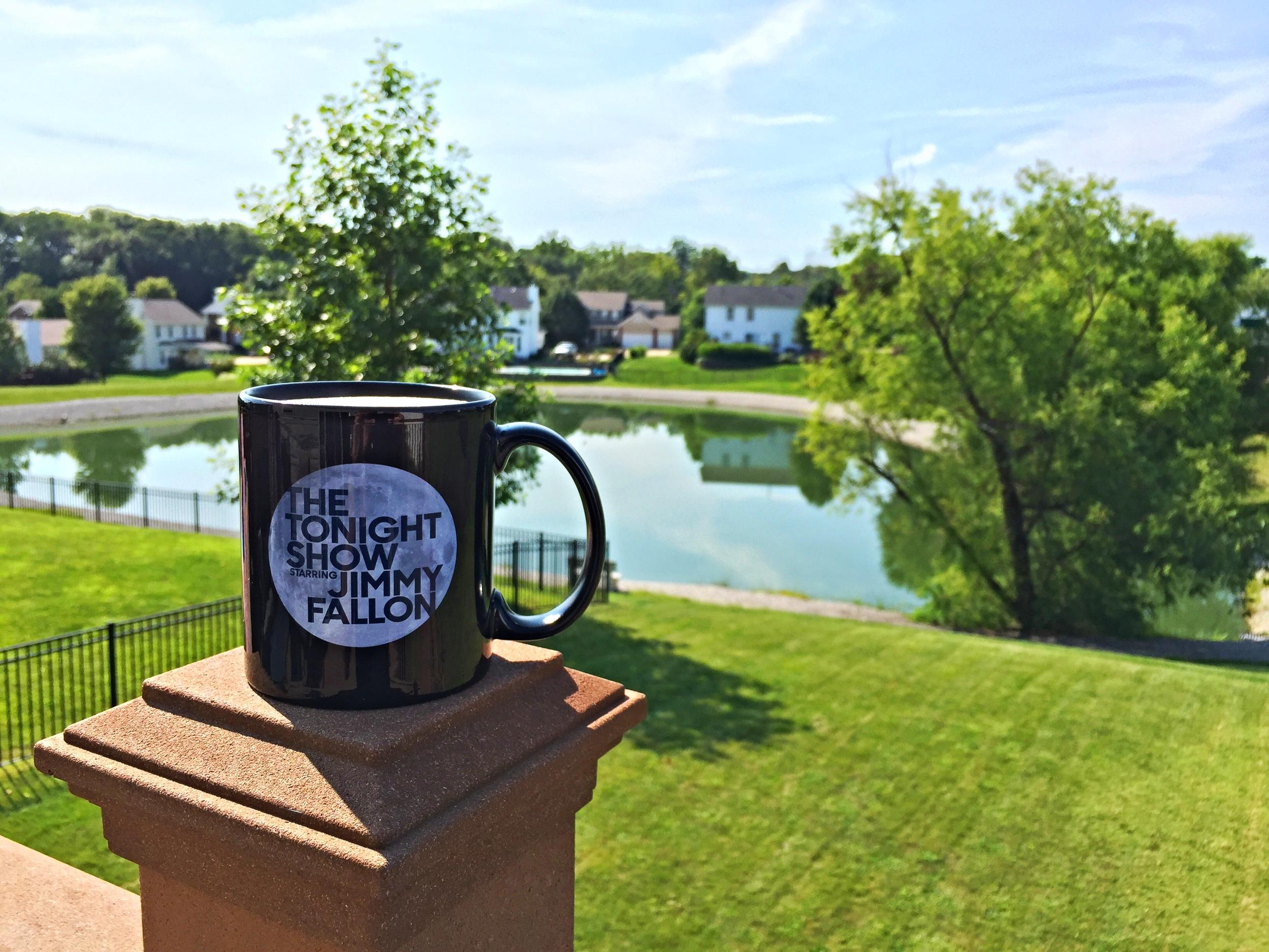A little Chai Tea to start off the day. Love my Jimmy Fallon mug.
