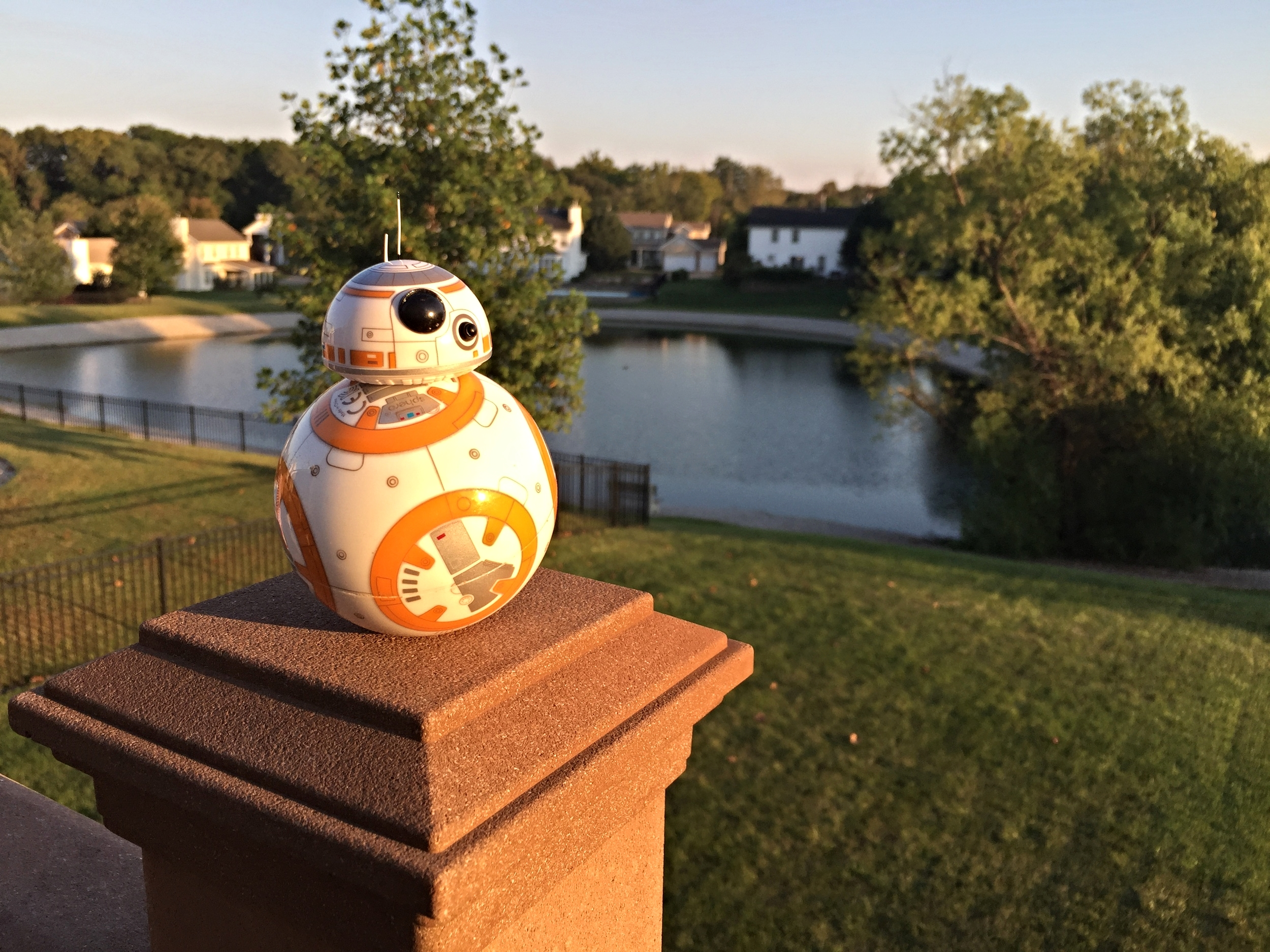 The BB-8 from Sphero....more fun than a Gundark