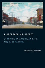 A Spectacular Secret: Lynching in American Life and Literature  by Jacqueline Goldsby (University of Chicago Press, 2006)